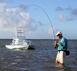 Fishing charters south padre island port isabel guides for Port isabel fishing